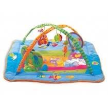 Palestrina Tiny Love Gymini Kick & Play